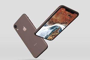 Lộ diện hình ảnh iPhone XC trước ngày ra mắt, giá khoảng 700 USD