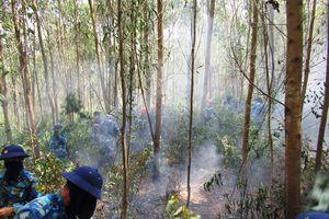 Cháy rừng tràm, thiệt hại hàng trăm triệu đồng