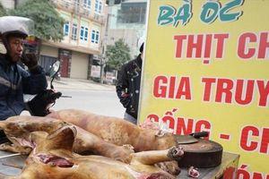 Thịt chó hay thịt gà cũng là động vật, tại sao phải bỏ?