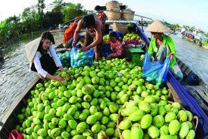 Nông nghiệp du lịch Việt Nam học được gì từ Đài Loan?