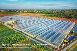 Vinaseed - Hướng đi mới của ngành nông nghiệp Việt