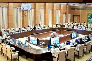 Công tác xây dựng pháp luật được Chính phủ quan tâm chỉ đạo quyết liệt