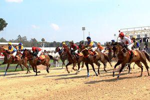 Độc đáo trường đua 'ngàn tỷ' trong KDL Đại Nam