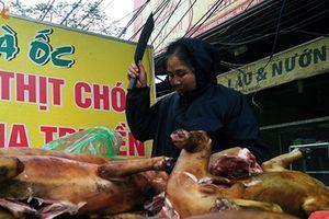 Hà Nội muốn cấm bán thịt chó ở nội thành từ năm 2021