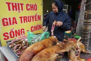 Giáo sư Trần Lâm Biền: 'Hạn chế giết thịt chó để phòng bệnh dại thì đúng nhưng nói ăn thịt chó gây phản cảm là sai'
