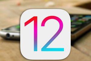 Cách cài đặt iOS 12 trước khi Apple phát hành