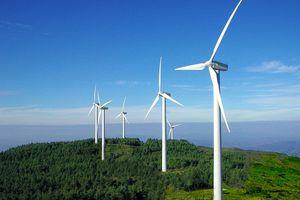 Tăng giá mua điện gió lên 1.928 đồng/kWh từ 1/11