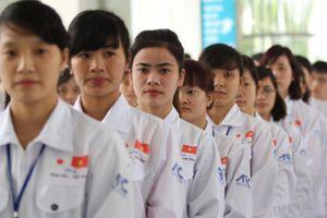 Nhiều cơ hội nâng tầm hợp tác lao động Việt-Nhật