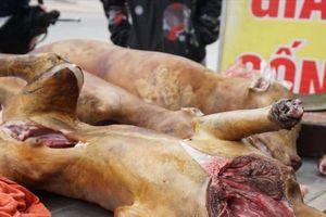 Muốn cấm ăn thịt chó thì phải được quy định trong văn bản luật
