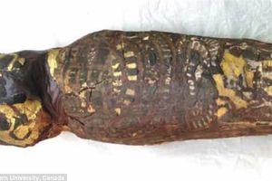 Bí ẩn về xác ướp Ai Cập 2.100 năm chính thức được giải mã