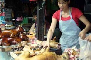 Chuyện lạ ở Hà Nội: Cả làng ăn thịt chó ngày Tết để lấy may