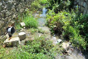 Bình Định: Ô nhiễm môi trường tại CCN Cát Trinh