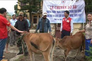 Thừa Thiên Huế: Không chạy theo thành tích làm sai lệch thực trạng nghèo địa phương