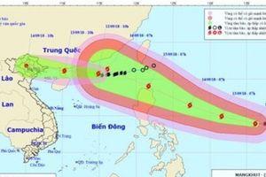 Hà Nội chủ động phòng chống cơn bão số 5 và siêu bão Mangkhut