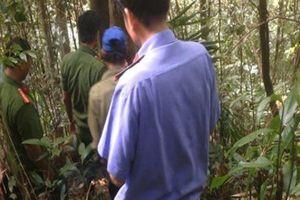 Đắk Lắk: Truy tìm nhóm thợ săn bắn trọng thương cán bộ tuần tra rừng