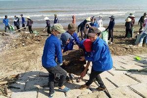 Hàng nghìn người dân 'giải cứu' bãi biển Quỳnh Lưu ngập rác