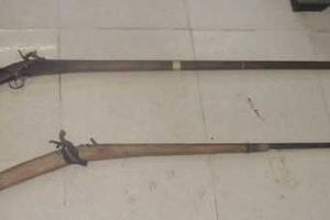 Đắk Lắk: Cán bộ kiểm lâm bị nhóm người đi săn bắn trọng thương