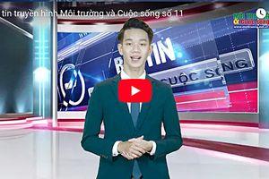 Bản tin truyền hình Môi trường và Cuộc sống số 11