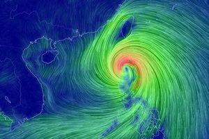 Sẵn sàng sơ tán hàng trăm nghìn hộ dân 'chạy' siêu bão Mangkhut