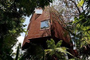 Nhà mát rượi nhờ mặt tiền gỗ bao quanh độc đáo