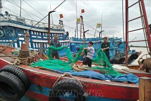 Nam Định cấm biển nhằm ứng phó với bão số 6