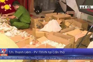 Không buộc tiêu hủy hơn 3.600 bánh trung thu không nhãn mác tại Cần Thơ
