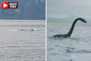 Hồ Okanagan: Phát hiện sinh vật biển dài hơn 12 m giống khủng long