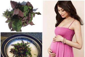 Bà bầu ăn lá tía tô: Tuyệt chiêu trị ốm nghén và những bệnh thường gặp trong thai kỳ