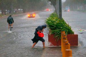 Cảnh tượng kinh hoàng sau siêu bão Mangkhut