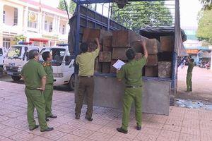 Nhận 3 triệu chở 31 hộp gỗ lậu lên Buôn Ma Thuột