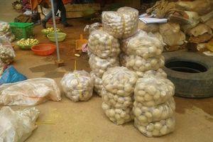Đưa nông sản Trung Quốc ra khỏi chợ nông sản Đà Lạt