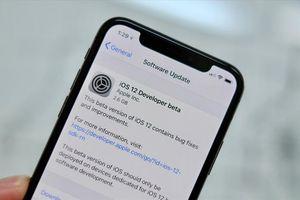 Cách chuẩn bị cho bản phát hành iOS 12 trên iPhone và iPad chính thức trong hôm nay