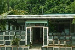 Cận cảnh: Ngắm hàng rào bằng 400 chiếc TV của lão nông ở Kiên Giang