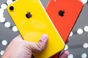 Xem chuyên gia phân tích ý nghĩa các màu sắc trên iPhone Xr