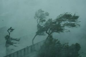Trung Quốc phát cảnh báo đỏ đối với siêu bão Mangkhut