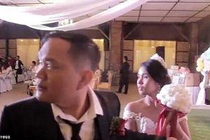 Cô dâu, chú rể 'đứng hình' vì bão Mangkhut