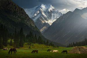 Kyrgyzstan đẹp hoang dã qua ống kính nhiếp ảnh gia