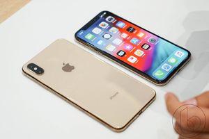 Cửa hàng kinh doanh iPhone lần lượt rời Việt Nam đi 'săn' iPhone mới