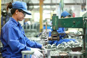Bộ Công thương đào tạo doanh nghiệp hỗ trợ về áp dụng 5S3D và ISO 5001