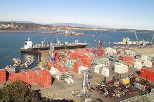 Thanh tra bán cổ phần cảng Quy Nhơn: Bộ GTVT là 'nguồn' sai phạm chính, yêu cầu thu hồi số cổ phần đã bán