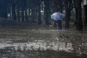 Siêu bão Mangkhut tiếp tục gây mưa lớn tại miền Nam Trung Quốc
