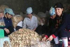 Kỳ10: 'Đột nhập' lò nấu 'cao dược thảo' chỉ người Dao mới có cứu hàng vạn bệnh nhân xương khớp mãn tính