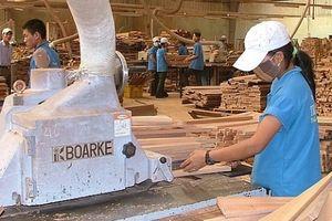 Doanh nghiệp nhập khẩu gỗ vào Australia phải đáp ứng yêu cầu mới