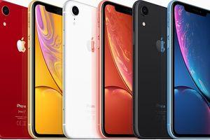 iPhone Xs Max được chuộng hơn iPhone Xs, nhưng XR sẽ đánh bại cả đôi