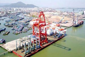 Thanh tra Chính phủ kết luận vụ cổ phần hóa Cảng Quy Nhơn: Bộ Giao thông Vận tải có vi phạm