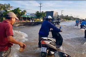 ĐBSCL đón lũ 'đẹp': Nhà ngập trước, ruộng ngập sau