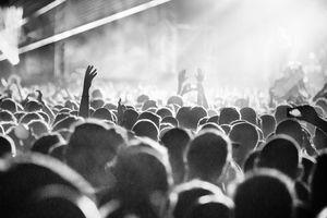 2 người chết khi tham gia lễ hội âm nhạc ngoài trời