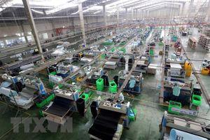 Chuyên gia Nhật Bản khẳng định Việt Nam là điểm đến đầu tư an toàn