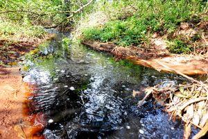 Pleiku (Gia Lai): Nước thải 'nguy hại' trực tiếp đổ ra suối?