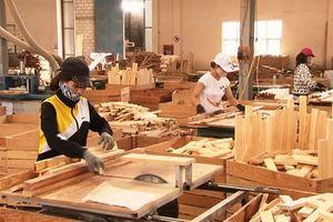 Khuyến công Lâm Đồng: Thu hút hiệu quả nguồn vốn đối ứng